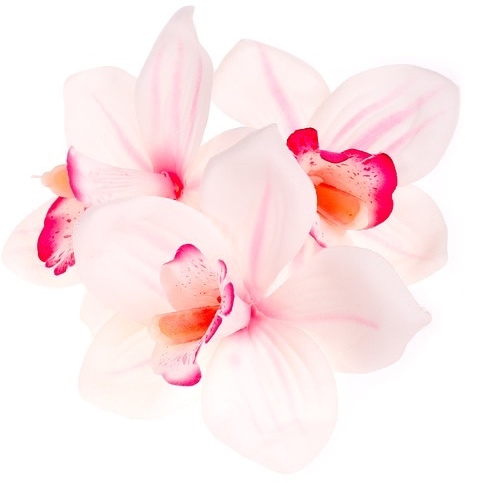 Orchid Beauty Centre